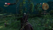 The Witcher 3: Wild Hunt nage cheval nage !!!