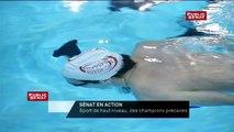 Sénat en action - Sport de haut niveau, des champions précaires - La bande-annonce