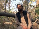 Pashto tv.Ismail Momand,,Zebo,,pashto drama promo ,,pashto drama director,,pashto drama writer,,creative director,,khyber tv,,art