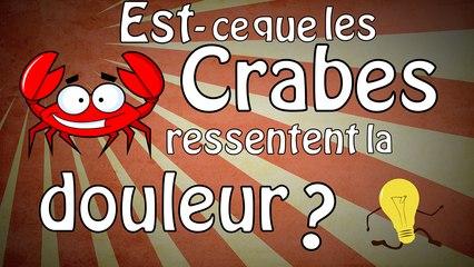 Est-ce que les crabes ressentent la douleur ?