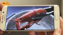 Mobile phone-Samsung Galaxy S6 and s6 Edge Hands On full REVIEW, Tips