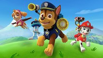 Paw Patrol Episodes Eggs Cartoon Full Games - Paw Patrol Cakes Christmas Song 2015