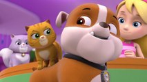 Paw Patrol Full Episodes - Cartoon Movie 2015 (small) - Paw Patrol Episodes Full Movies Game, Paw Patrol Song Cakes Eggs 2015