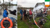 Donkey grins ear-to-ear after being rescued from flood waters