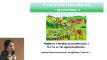 M. Jouven - Introduction : appliquer l'Agroécologie à l'élevage
