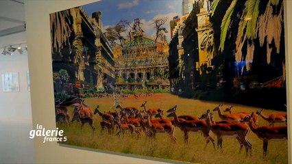 L'Œil de la Galerie : Exposition  « Climats artificiels » (Fondation EDF Récamier)