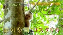 滝川クリステルが行く「命の楽園 コスタリカ」 7/19(日)�