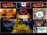 Nos bons Vœux - LES CONCERTS & FESTIVALS 2015-2016