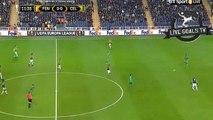Fernandão Amazing Goal - Fenerbahçe S.K. 1-0 Celtic F.C. - Europa League - 10.12.2015