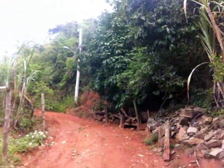 Tombos - MG, Bosque da cidade