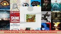 Download  El Ciclo De Vida De La MariposaLife cycle of a butterfly Ciclo De Vida  the Life Cycle EBooks Online