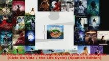 Read  El Ciclo De Vida Del MosquitoLife cycle of a mosquito Ciclo De Vida  the Life Cycle EBooks Online