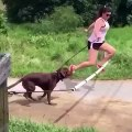 When you think you can run faster than your dog