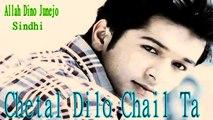 Allah Dino Junejo - Chetal Dilo Chail Ta