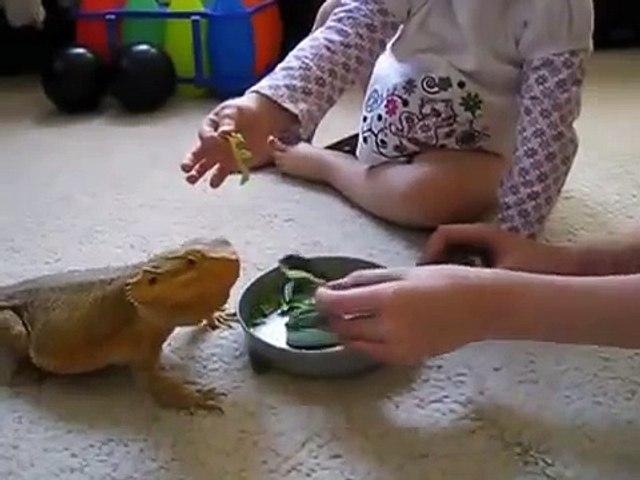 Crianças e caseiro dragão!