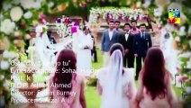 Tere Ishq Mein Full HD Video Song 1080p Arijit Singh,Atif aslam Yo Yo Honey Singh Latest Songs 2015