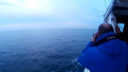 Journée pêche au thon Vidéo 3