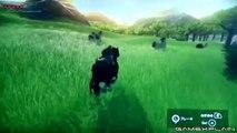Zelda Wii U Analysis - Nintendo Direct Gameplay (Secrets & Hidden Details)