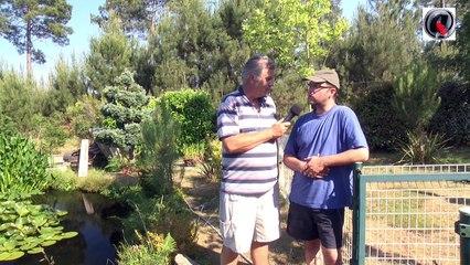 Le bassin de jardin à airlift de Arnaud