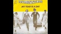 Les Irrésistibles - My Year Is A Day