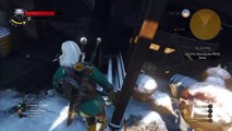 The Witcher 3: Wild Hunt THE LAST WISH seach the ship using witcher senses
