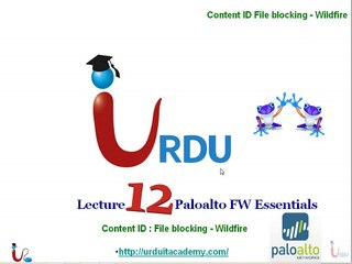 PA Firewall Essentials Lecture 12