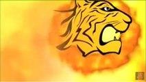 Bangladesh Premier League (BPL) T20 Cricket 2015 [ Video