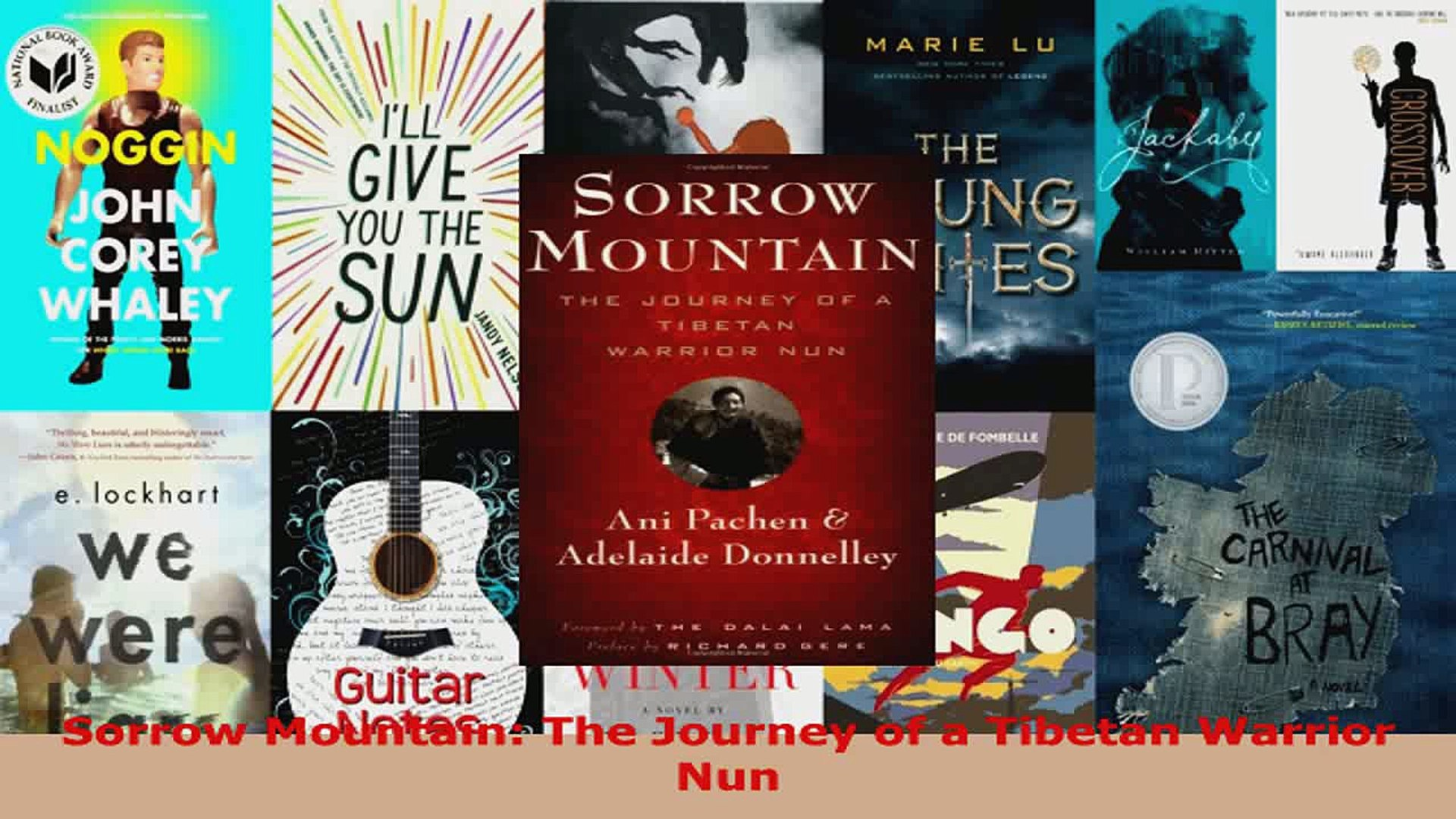 Read  Sorrow Mountain The Journey of a Tibetan Warrior Nun Ebook Free