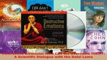 Read  Destructive Emotions How Can We Overcome Them A Scientific Dialogue with the Dalai Lama PDF Free