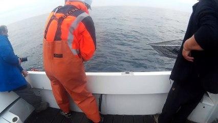 Journée pêche au thon Vidéo 10