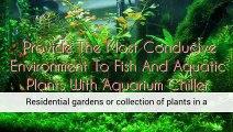 Aquarium Plants Carbondoser Regulator Planted Aquarium Aquarium Plants Uk