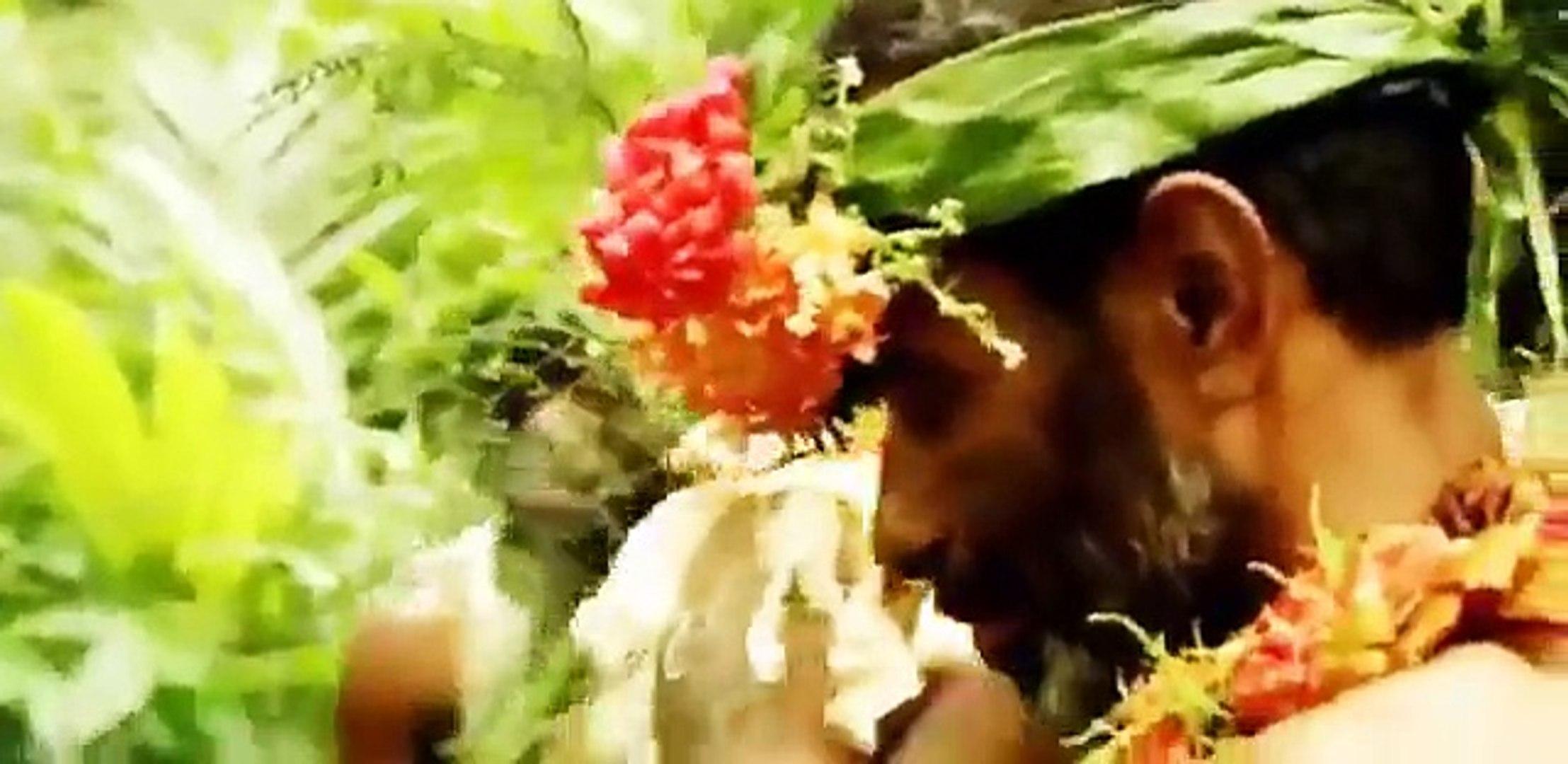 Discovery Channel - Discovery WildLife - Islands Fiji
