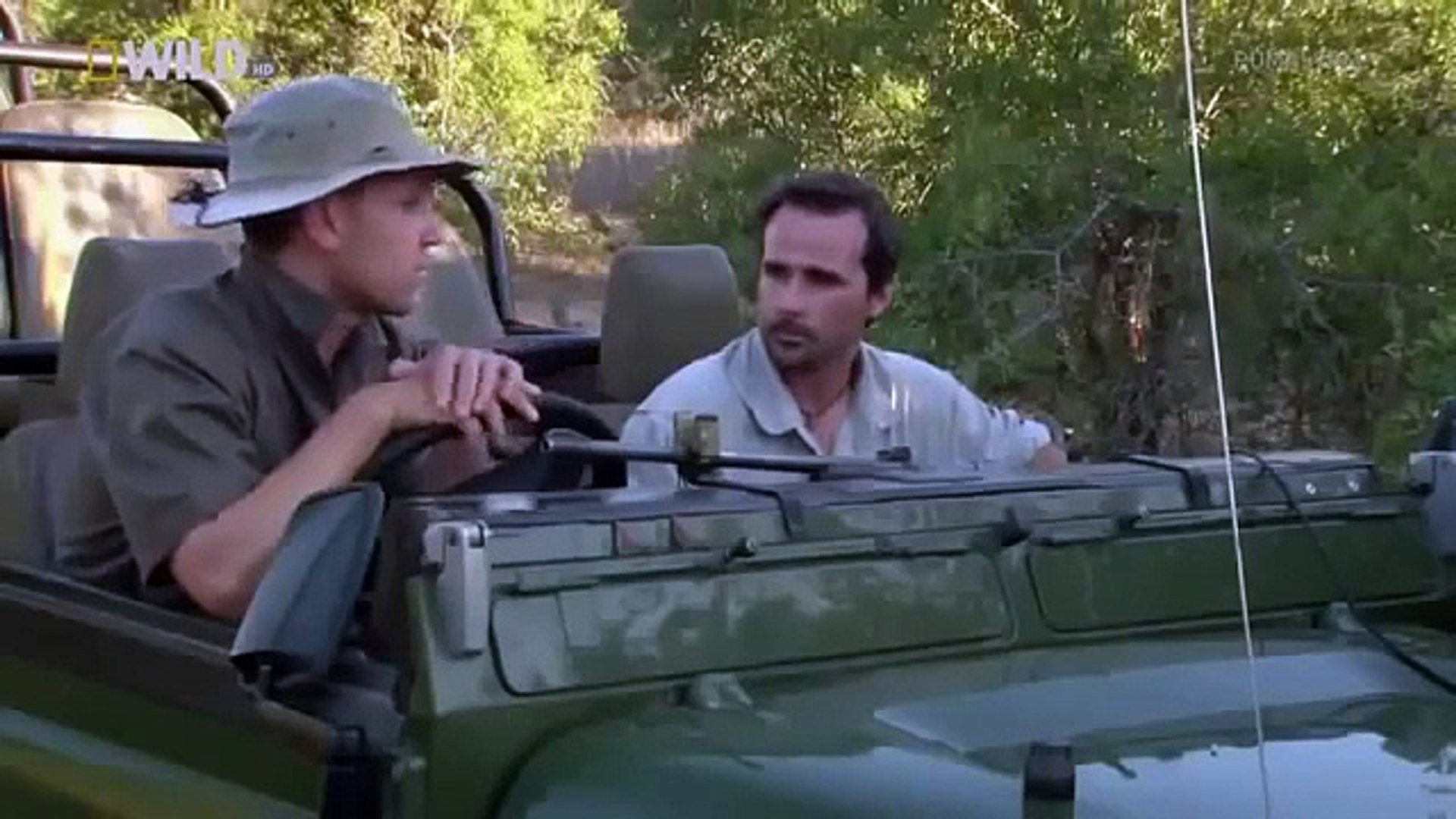 wildlife animals attack documentary animals fighting in African || Animals Planet Discovery