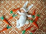 Ho mon Dieu que ce bébé est trop chou ! Simplement magnifique !