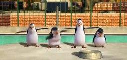 The Penguins of Madagascar Season 2 Episode 11 [Full Episode