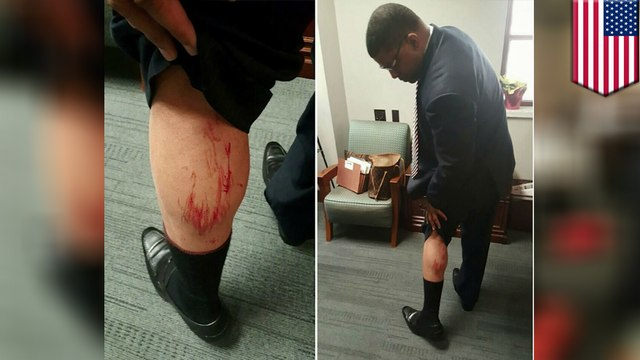 Birmingham mayor and city councilor get into fist fight at city council meeting
