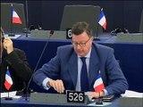 Edouard Ferrand Parlement européen débat préparatoire Conseil européen 17/18 décembre 2015