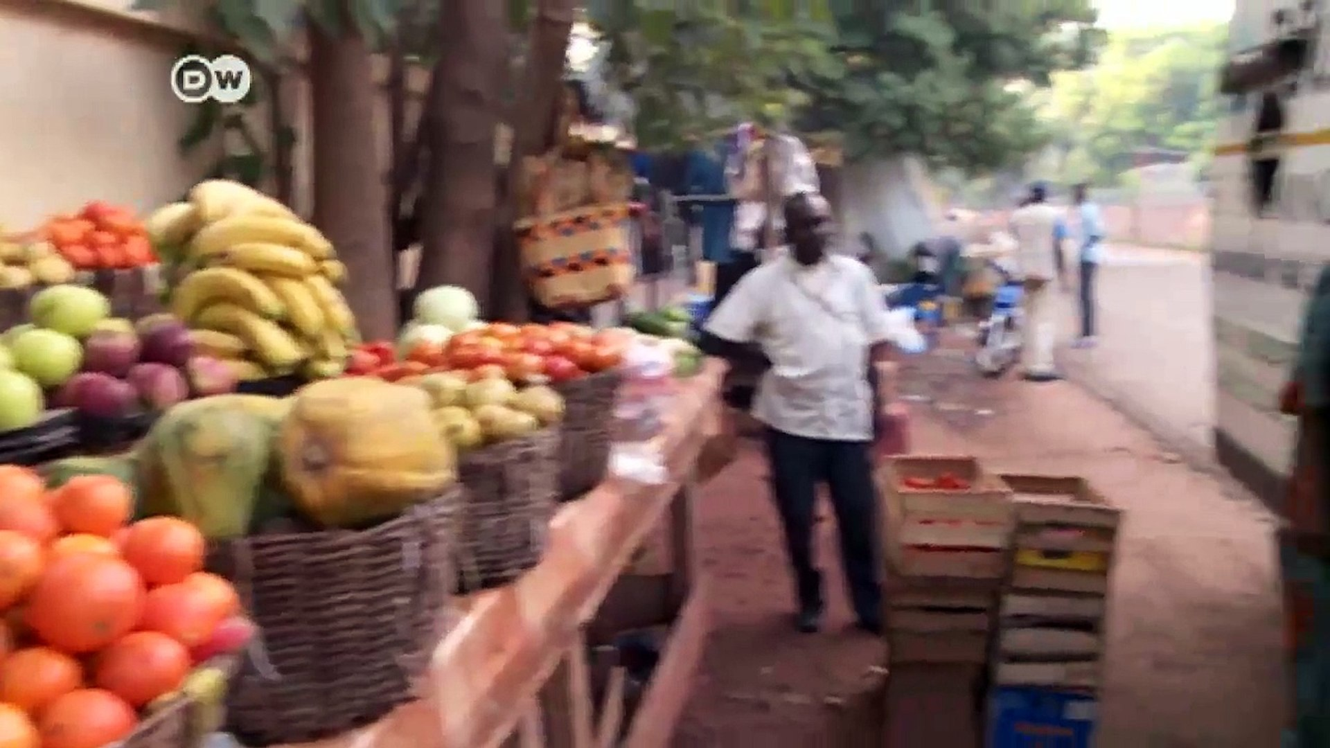 City farming in West Africa   DW News