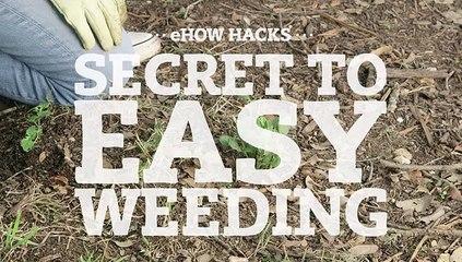 Secret to Easy Weeding
