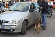 Scoperto traffico droga Palermo-Napoli, 7 arresti
