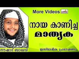 നായ കാണിച്ച്  കൊടുത്ത മാതൃക...  Islamic Speech In Malayalam | Noushad Baqavi New 2014