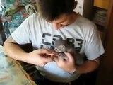 El Gatito Mas Tierno Durmiendo!! ★ Gato divertido gato chistoso gato tierno loco risa humo