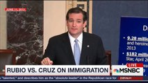 Ted Cruz says forget politics and find a middle ground