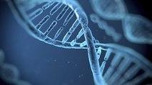 documentaire scientifique, Ce que mes gènes disent de moi ARTE 2015 HD