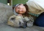 Orphaned Hyenas Lap Up Some Hugs
