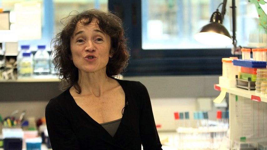 Airbus Group - Rut Carballido Lopez - jeune femme scientifique de l'année - prix Irène Joliot-Curie 2015