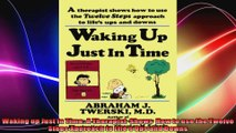 Waking up Just in Time A Therapist  Shows  How to use the Twelve Steps Approach to Lifes