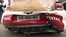 Compilation d'accidents de voiture en FIA World Rally Championship