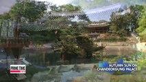 Spot-20151006 viewfinder AUTUMN SUN ON CHANDEOKGUNG PALACE 20151006 뷰파인더 창덕궁 가