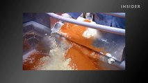 You will never want to eat a hot dog again after watching how they're made....
